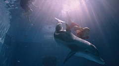 Spin-vfx-dolphin-tale4